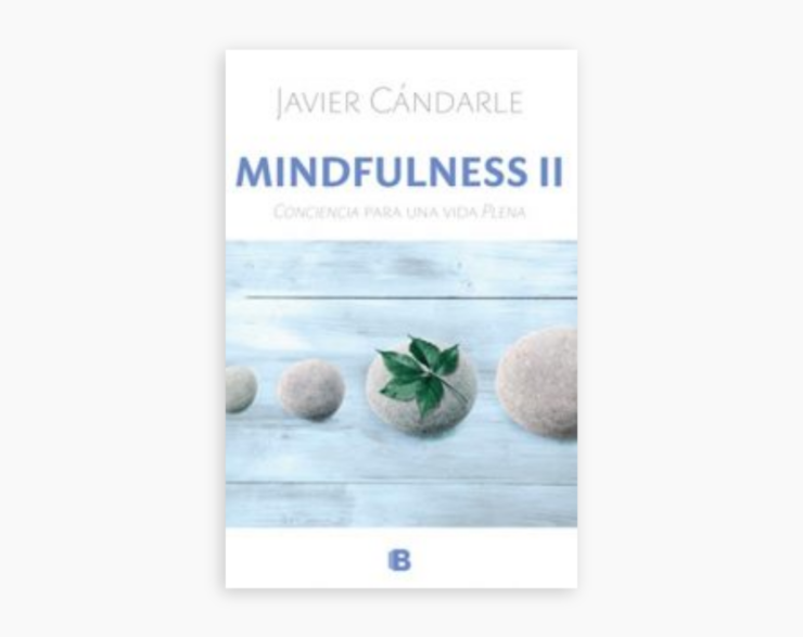 Mindfulness II. Conciencia para una vida Plena